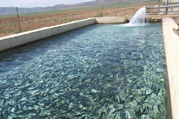 احداث فاز سوم مجتمع پرورش ماهی شهید احمدیان تصمیمی اشتباه است