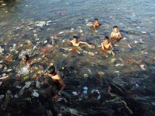 زباله های پلاستیکی گونه های مهاجم را به سواحل می آورند