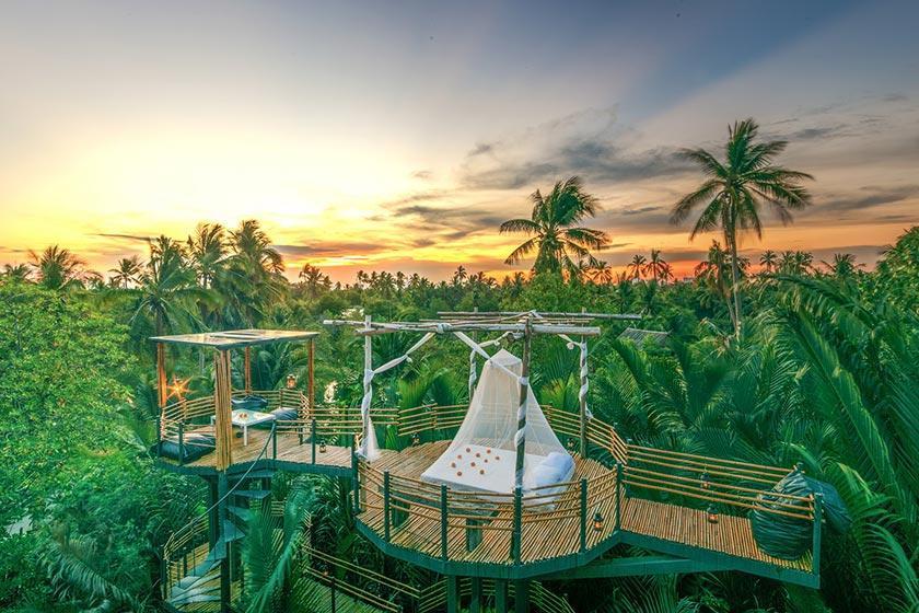 اقامت در هتل درختی در بانکوک