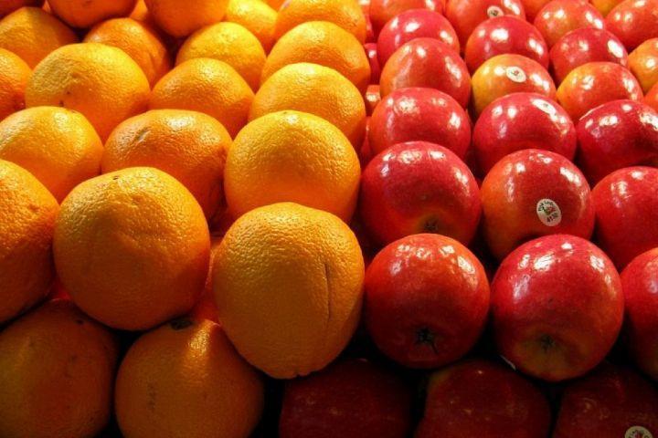 سال جاری در فراوری محصولات سیب، پرتقال، زعفران و پسته مازاد فراوری داریم