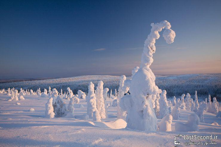 جنگل زادگاه بابانوئل در فنلاند