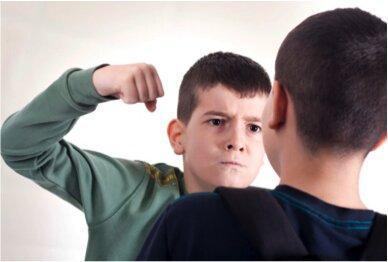 برای کاهش رفتارهای قلدری در دانش آموزان، والدین را آموزش دهید