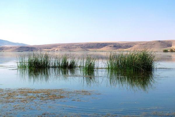 تالاب بینالمللی حسنلوی نقده 4 میلیون مترمکعب آبگیری شد